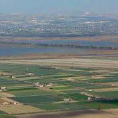 Imagen de los dos embalses de El Hondo (Poniente y Levante) y de los cultivos que los rodean