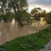 Última crecida del Ebro