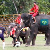 Fútbol con elefantes para promover la Copa Mundial de la FIFA 2018 (12-06-2018)