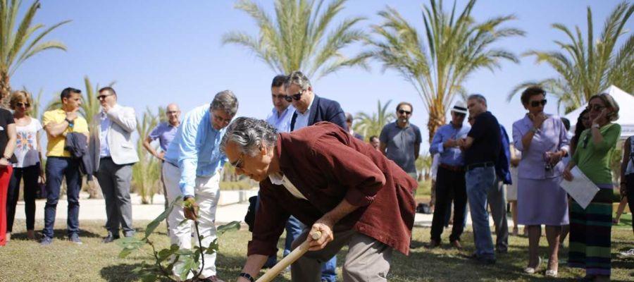 La UMH ha incuagurado este jueves un Jardín del Honoris en el campus de Elche