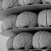 El cerebro puede hacernos sentir placer ante espectáculos desagradables