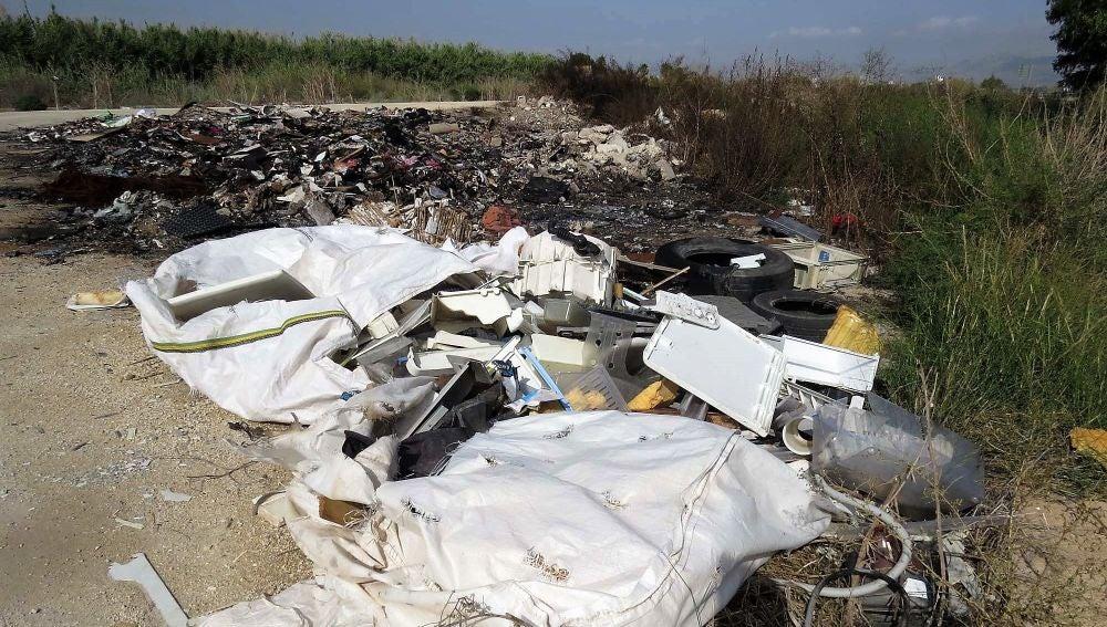 Uno de los puntos del perímetro de El Hondo que AHSA pide limpiar
