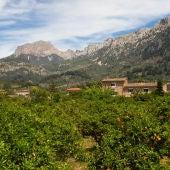 Vall de Sóller, en la Serra de Tramuntana