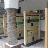 Exposición itinerante sobre la Palmera Imperial de Elche