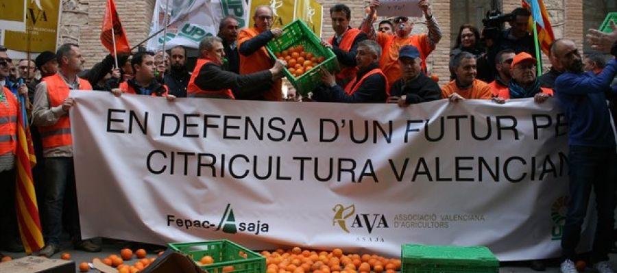 Manifestación FEPAC-ASAJA en defensa de la citricultura valenciana.