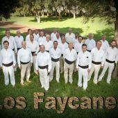 Los Faycanes