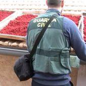 Un agente de la Guardia Civil junto a parte del azafrán adulterado intervenido en Novelda