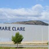 Planta Marie Claire.