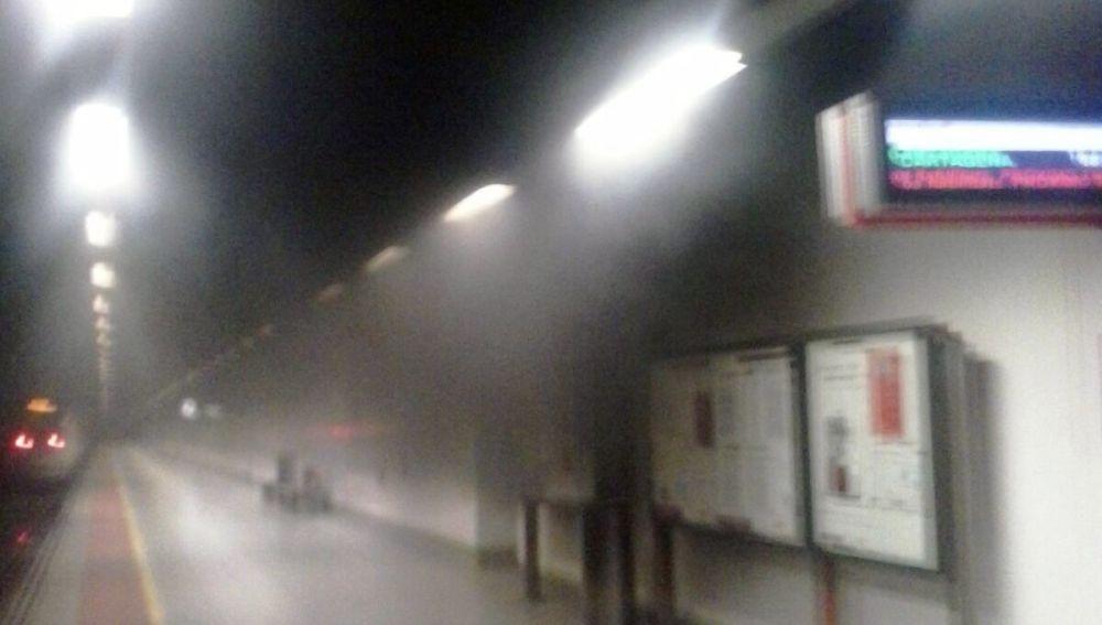 Un tren accede a la estación Elche-Parque de Renfe en medio de una concentración de humo.