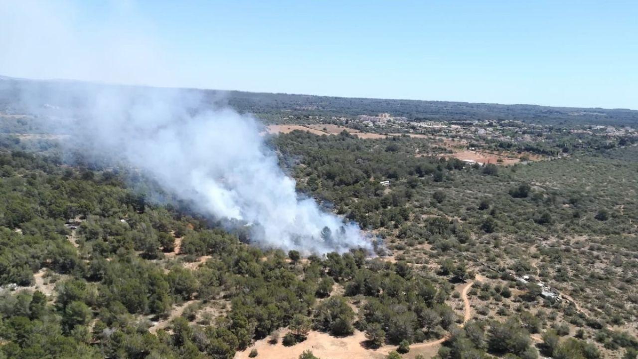 Controlado El Incendio Forestal De Son Verí (Mallorca