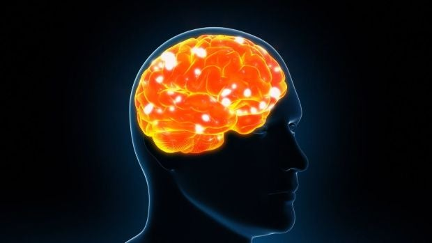 """Xurxo Mariño: """"Las personas bilingües tienen un retraso de 4 o 5 años en la aparición del Alzheimer"""""""