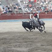 Toros Segovia