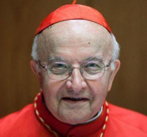 Cardenal José Manuel Estepa.