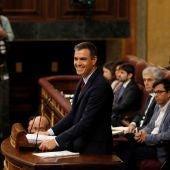 Pedro Sánchez, en el Congreso de los Diputados