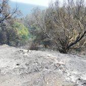 El monte de Calamocarro incendiado en Ceuta