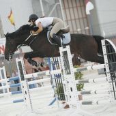 Concurso Hípico Nacional de Saltos