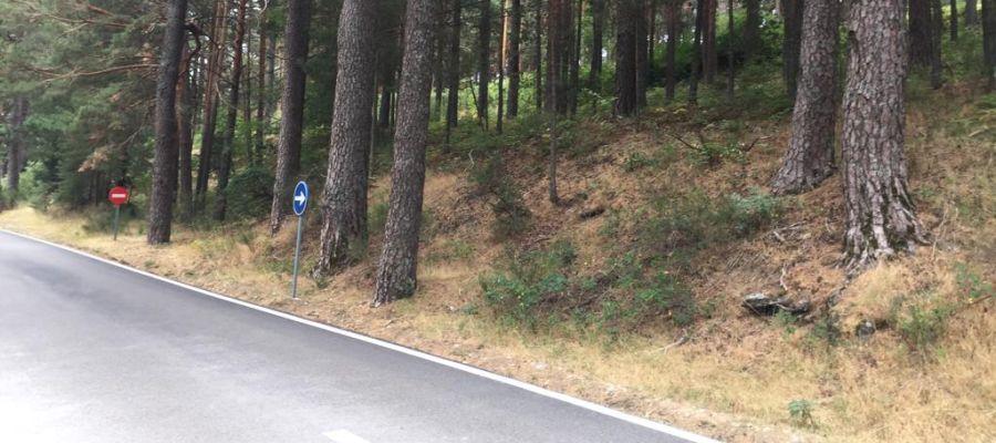 Alrededores del aparcamiento, entre Cercedilla y Fuenfría, donde se ha encontrado el coche