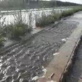 Acequia desbordada en la vereda La Checa desbordada a su paso por el parque agrario de Carrizales de Elche.