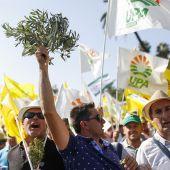 Miles de agricultores se han manifestado en Madrid