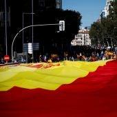 Decenas de personas portan la bandera de España de 1.000 metros cuadrados