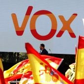 Manifestación de Vox en Colón, Madrid