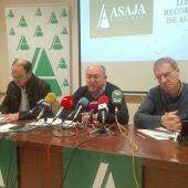 Alcolea, Rodríguez y Miranda, durante la rueda de prensa
