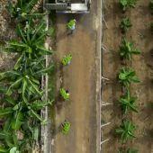 La agricultura sostenible, un modelo que respeta nuestro planeta