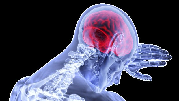 Ciencia: ¿Por qué es tan grande la cabeza?