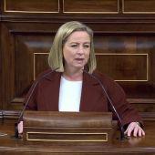 """Ana Oramas se mantiene en el 'no' y pide disculpas a Coalición Canaria por cómo cambió su voto """"No guardé las formas"""""""