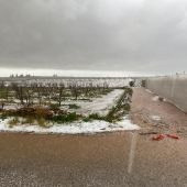 Imágenes del campo tras el temporal.