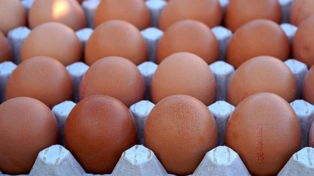 ¿Por qué los huevos tienen que estar en el frigorífico si en el supermercado no están en frío?