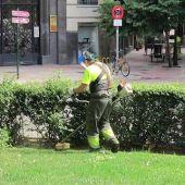 Trabajador de parques y jardines