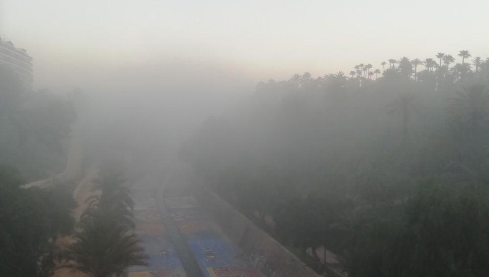 Niebla en la ladera del río Vinalopó en Elche.