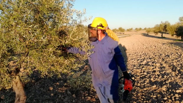 Las dificultades a las que se enfrentan los agricultores en Villaconejos