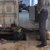 Así es la fábrica subterránea de tabaco encontrada bajo una cuadra de caballos en Málaga