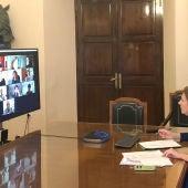 La alcaldesa de Castelló, Amparo Marco, reunida telemáticamente con miembros de la corporación municipal.