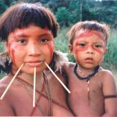 Cientificos brasilenos piden que se proteja a las poblaciones indigenas frente a la COVID 19