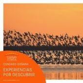 Condado - Doñana
