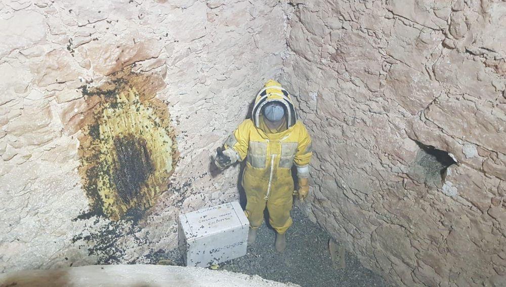 Miles de abejas en la bóveda de la iglesia