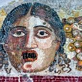 Mosaico Domus Romana