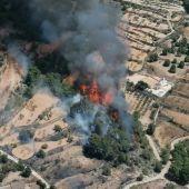 Incendio forestal en Monóvar.