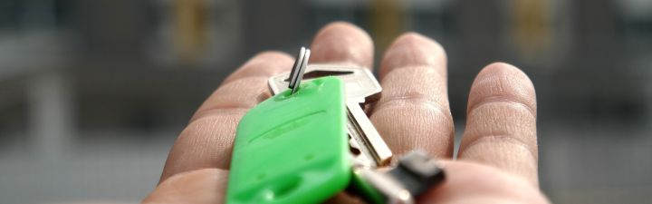 ¿Qué cree que dinamizará más el mercado de la vivienda?
