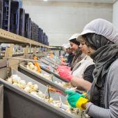 Trabajadoras en un almacén