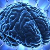Día Mundial del Cerebro