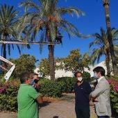 El delegado de Parques y Jardines, David Guevara, supervisando los trabajos en el arbolado