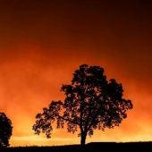 Imagen de los incendios de Oregon