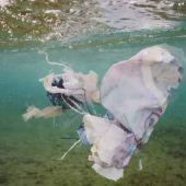 plásticos contaminando el mar