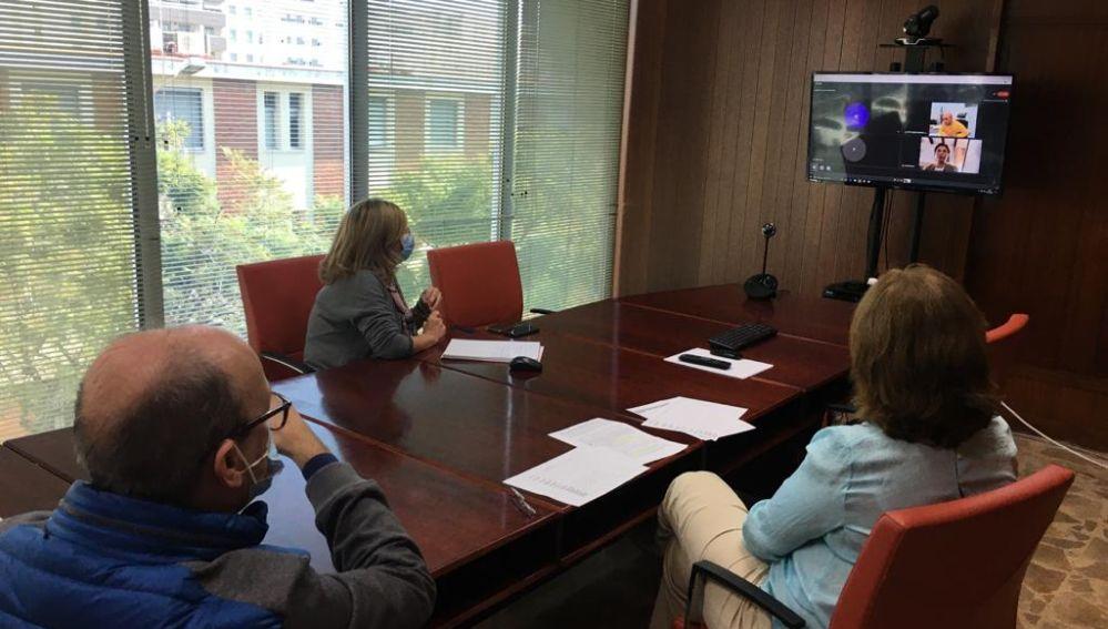 Reunión telemática celebrada esta tarde