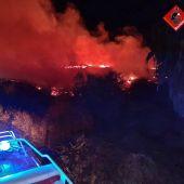 Incendio en el parque natural de El Hondo.