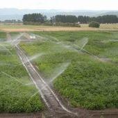 A Xunta senta as primeiras bases para a elaboración do Plan Estratéxico do sector agrario da Limia